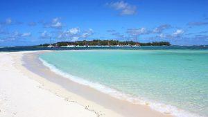 paysage paridisiaque en voyage sur l'île Maurice
